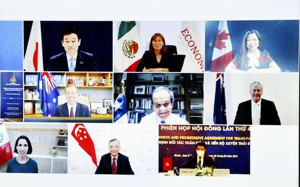 オンライン形式で行われたTPPの閣僚級会合「TPP委員会」の出席者=共同