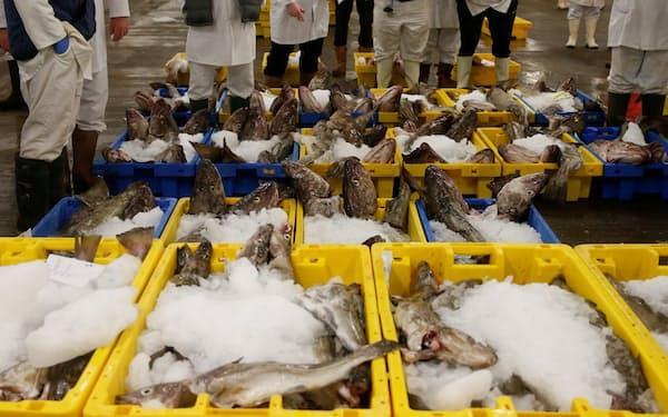 英国は魚介類などの輸入関税を引き下げる(英中部グリムズビーの魚市場)=ロイター