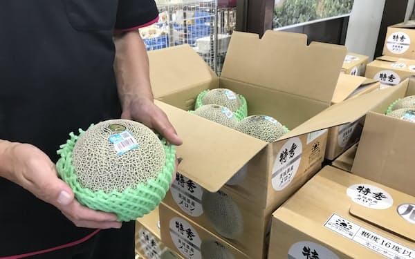 JA茨城旭村の新品種「エルソル」はさっぱりした甘みが特徴(サングリーン旭)