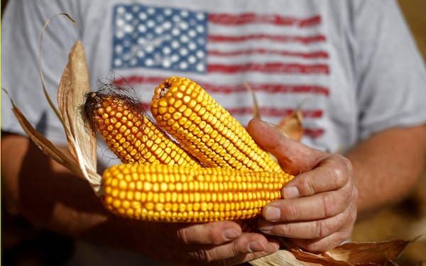 米国のトウモロコシの生育は高温乾燥の状態が左右=ロイター