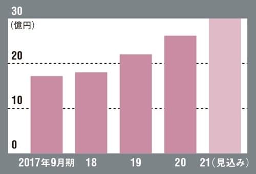 イルグルムの売上高の推移