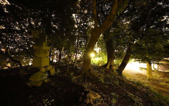 馬加康胤の首塚と伝えられる丘。住宅地の街路灯に五輪塔が照らし出される