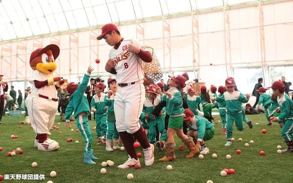 福島県相馬市に造成した相馬こどもドーム。楽天球団が整備した施設は計10カ所に上る(2014年)=楽天野球団提供