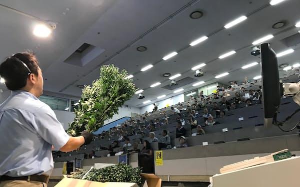 東京・大田市場フラワーオークションジャパン競りの様子(9月13日)