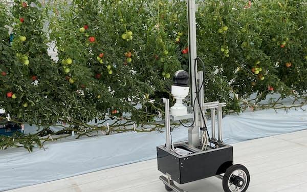 NTT東日本と東京都は25日、専用の試験圃場で「スマート農業」の実証実験を始めた