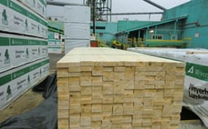米国の木材先物相場、最高値から5割急落 高騰を嫌気