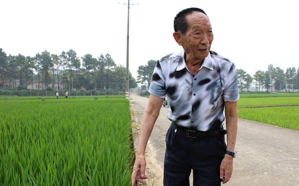 多収米の開発で中国の食料問題の解決に貢献した袁隆平氏(湖南省長沙市)
