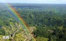運用大手、環境投資会社を買収 森林・農地の知見吸収