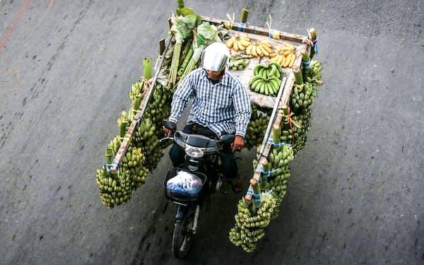 プノンペン郊外でバナナを運ぶ男性=ロイター