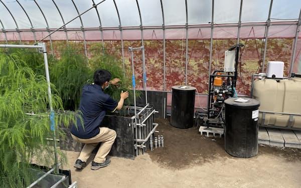 スタートアップなどの技術を束ねて野菜のハウス栽培を省力化する(群馬県内の農場)