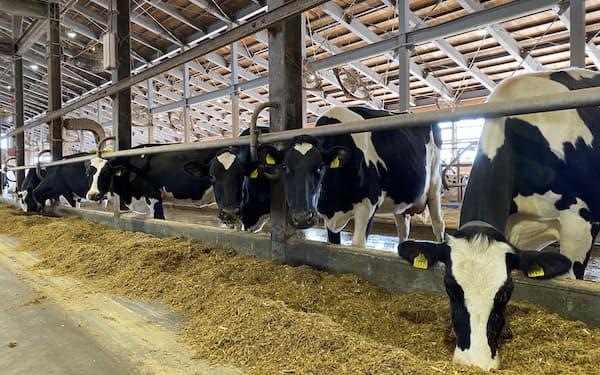 配合飼料には海外産の原料が使われている