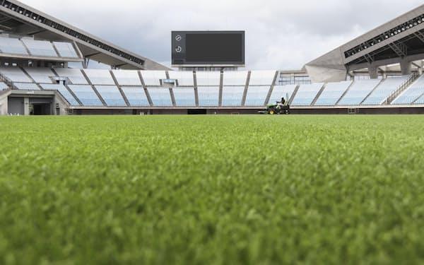 宮城スタジアムのピッチに敷かれた天然芝「復興芝生」(宮城県利府町)=共同