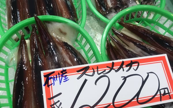 スルメイカの上半期の漁獲量は半減。過去最低を更新する可能性も(金沢市の近江町市場)