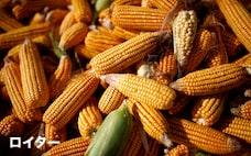 穀物や貴金属、商品高が急減速 投機マネーの流入鈍化