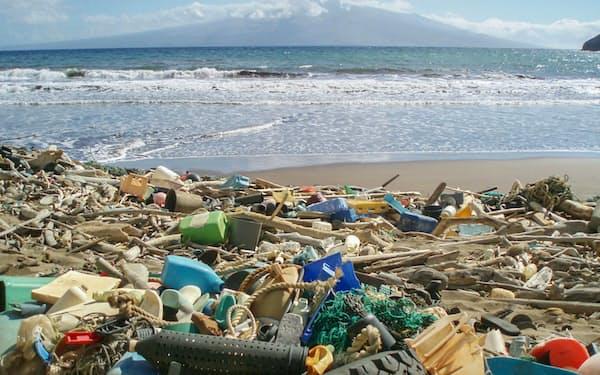 G20環境相は海洋プラスチックごみの削減で一致した(米ハワイの海岸のプラごみ)=共同