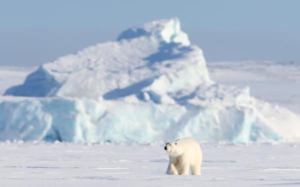 北極圏で最大の領土を持つのはロシアだ(4月、ロシア・アルハンゲリスク州)=タス・共同