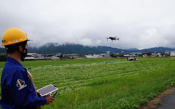 NTT西日本は愛媛大学などと組んで収穫量予測の実証実験を進める