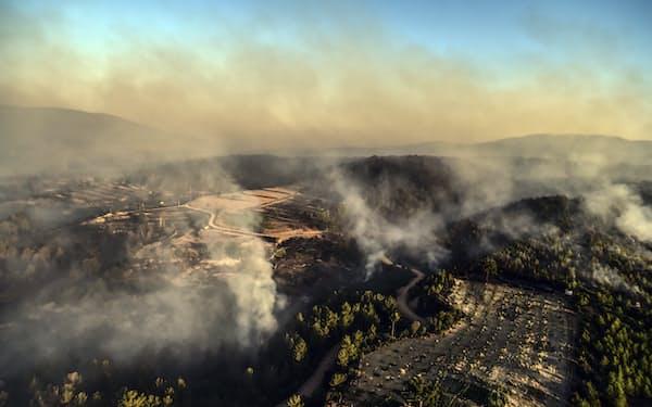 トルコの観光地マルマリス近くの森林でも山火事が起きた(3日、南西部ムーラ)=AP