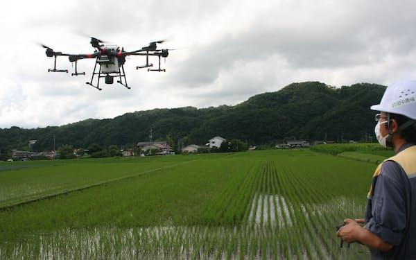 田中農場ではドローンでミネラルなどを散布する