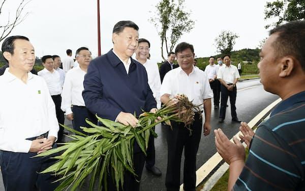 習近平国家主席は「共同富裕」の実現を重視(20年9月、湖南省)=新華社・共同
