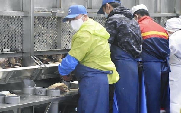 北海道猿払村の加工場でホタテの貝柱を取り出す技能実習生ら=共同