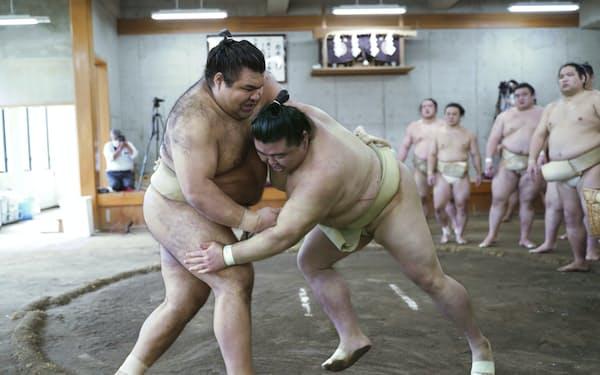 合同稽古で相撲を取る高安(左)と正代(23日、両国国技館の相撲教習所)=代表撮影・共同