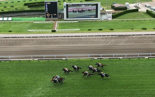 8月15日の小倉競馬出走馬には豪雨の影響で長時間の輸送を余儀なくされた馬もいた