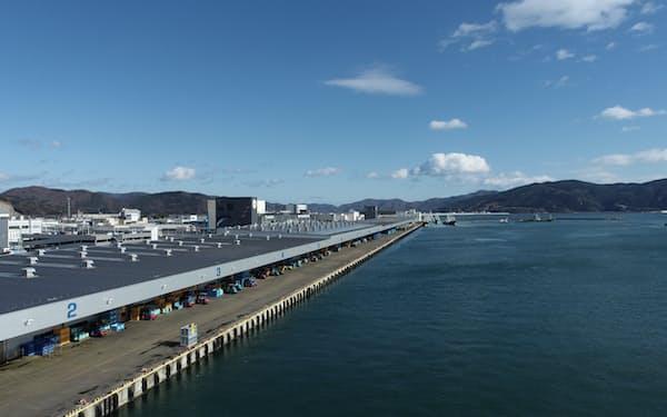今年の海づくり大会では石巻市の漁港で稚魚放流を実施する予定だ