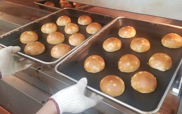 加東市産のもち麦を使ったロールパンは味や食感にこだわった(神戸市内のイスズベーカリー本店)