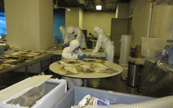 川崎市市民ミュージアムでは現在も収蔵品の修復作業が続いている