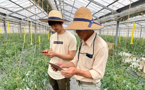 アグリスマイルは農家向けに、農薬の使用状況や圃場の作付けに関するデータを管理できるサービスを提供する