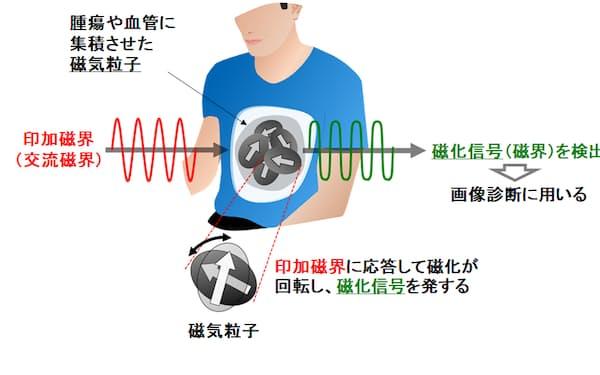 磁気粒子を高感度センサーで検出する