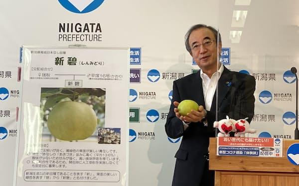 「新碧」を初公開する花角知事(9月15日、新潟県庁)