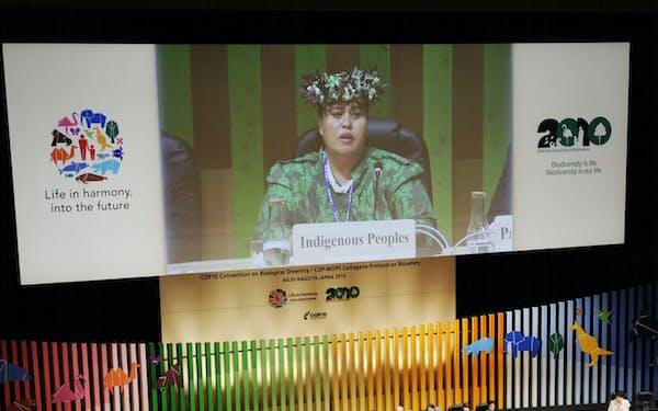 2010年に開かれた生物多様性条約締約国会議の閣僚級会合(名古屋市)=共同