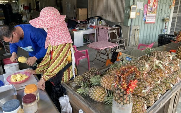 中国は3月、台湾産パイナップルの輸入を停止した(台湾の農家)