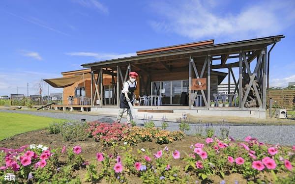 石巻南浜津波復興祈念公園の庭園「こころの森ガーデン」に植えられた花(8月、宮城県石巻市)=共同
