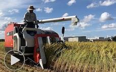 稲作の未来を先取り 農協と生協が環境配慮でタッグ