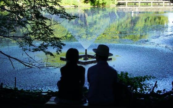井の頭弁財天前の池に噴水の水が降り注ぐ。水も話も尽きることがない