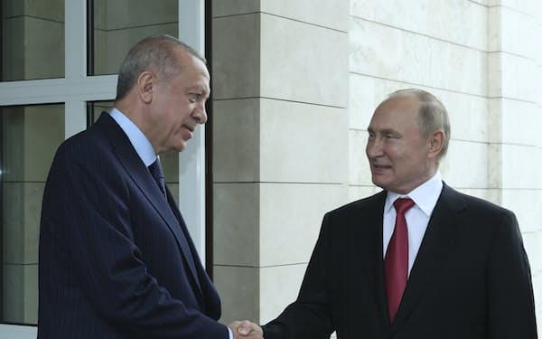29日、ロシア南部のソチで会談したトルコのエルドアン大統領㊧とプーチン大統領=AP