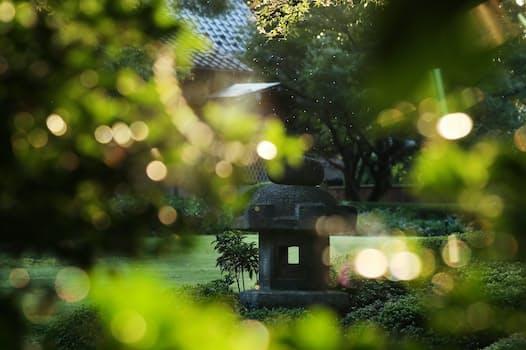 戦前からある大きな庭を木もれ陽がまだらに染める。感情で彩りが変わって見えるキャンバスだ