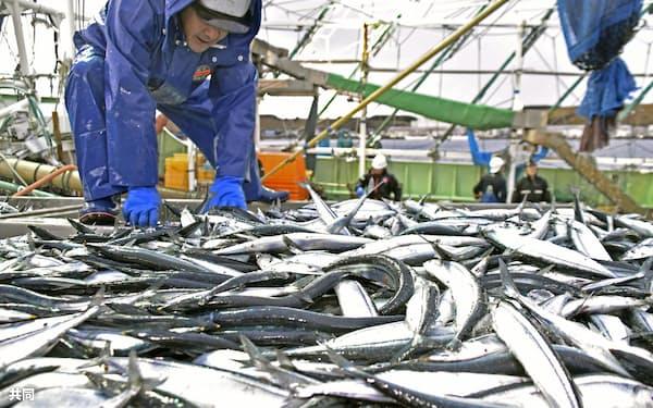 国際的な水産資源の管理の重要性が増している=共同