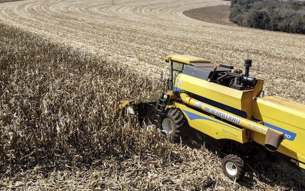 ブラジルでは干ばつなどの影響で、トウモロコシの収穫が減っている=AP
