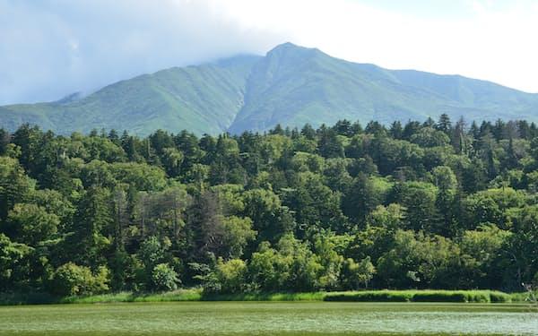 北海道では緊急事態宣言解除後の旅行需要回復に期待する声も(観光名所として知られる利尻島の利尻山)