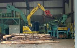 合板などには使えない木材を破砕してバイオマス発電の原料として活用する(京都府舞鶴市の林ベニヤ舞鶴バイオ発電所で)