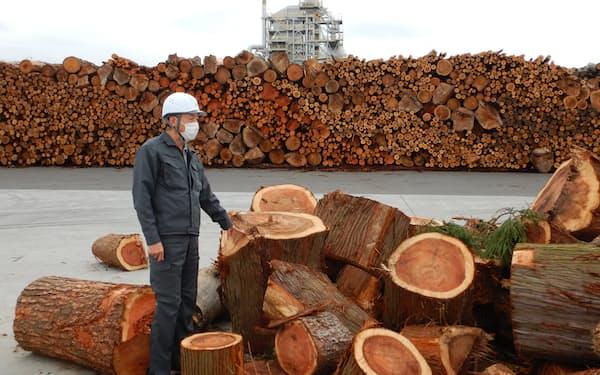 建材などに使えない端材を燃料に使うことで林業者の収益確保につながる(青森県八戸市)