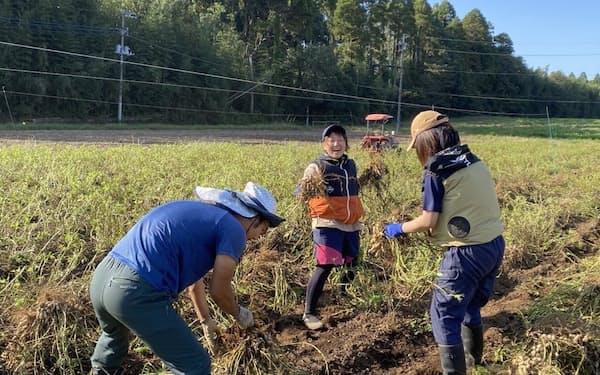 市内の農園で農業体験をする若者