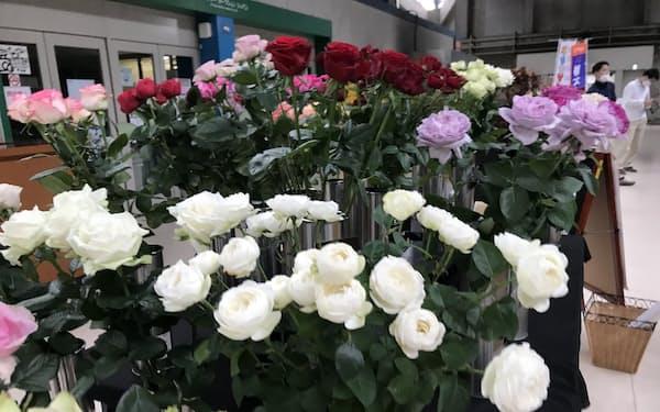 白いバラは婚礼向けに使われる