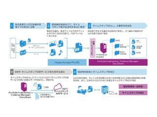 図 「先使用権対応ソリューション」の文書管理の流れ