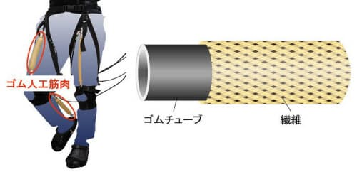 歩行トレーニング装置(左)と空気圧式ゴム人工筋肉(右)(出典:ブリヂストン)