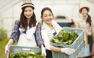 農業体験を「お礼」にする自治体も。写真はイメージ=PIXTA